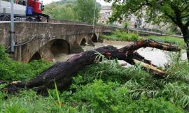 Maltempo, San Severino Marche: fiume Potenza liberato da rami e tronchi dopo le piogge