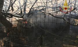 Montefano, fiamme in un vecchio pollaio: coinvolti animali da cortile (FOTO)