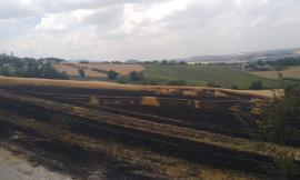 Vasto incendio di sterpaglie a Pollenza: Vigili del Fuoco in azione (FOTO)