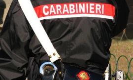 Civitanova, trovate 72 cartucce da caccia abbandonate tra i rifiuti: indagano i carabinieri