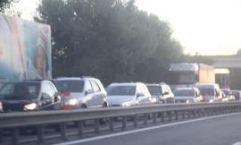 Montecosaro, cade il ramo di un albero lungo la Superstrada: traffico bloccato