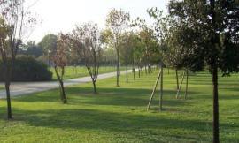 Tre nuove aree verdi attrezzate a Macerata: anche un giardino intitolato all'ex sindaco Marconi