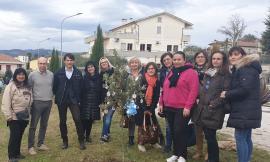 Appignano ha festeggiato la Giornata nazionale dell'albero