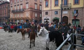 """Tolentino, torna la """"Benedizione di Sant'Antonio"""": attesi circa 200 cavalli, il programma"""