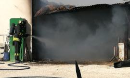 Montelupone, in fiamme un capanno agricolo (FOTO)