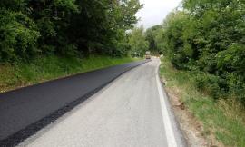 Strade provinciali: sette cantieri avviati per 1,5 milioni di euro