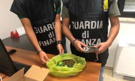 Montefano, beccato con 430 grammi di hashish e marijuana: arrestato un 20enne (VIDEO e FOTO)