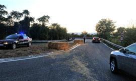 Balle di fieno perse in superstrada, intervengono i Carabinieri (FOTO)