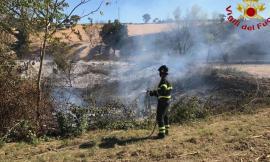 Loro Piceno, sterpaglie a fuoco: Vigili del Fuoco al lavoro da ore