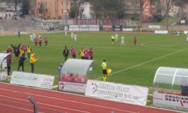 Serie D, per il Tolentino esordio a porte chiuse: nel derby con la Recanatese ipotesi 1000 spettatori
