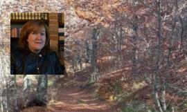 Parco dei Monti Sibillini, Maria Laura Talamè subentra nel ruolo di direttrice