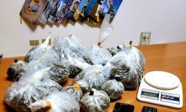 Montecosaro, coppia con 1.200 grammi di marijuana nascosti in casa: scattano le manette (VIDEO e FOTO)