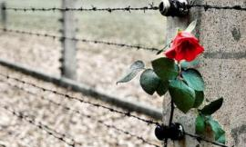 Appignano, 2 appuntamenti online per la Giornata della Memoria e del Ricordo: come partecipare