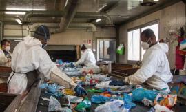 """Giornata mondiale del riciclo, Cosmari: """"Raccolta differenziata in provincia al 75%"""""""