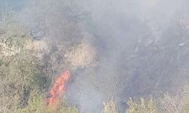Treia, fiamme in un'area boschiva: incendio domato dopo oltre 4 ore. Si sospetta il dolo (VIDEO)