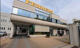 """La """"Ferrero"""" mette gli occhi su Potenza Picena: in cantiere progetto dedicato al nocciolo"""