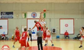 Coppa Centenario serie D, la palla a spicchi torna nei palas: esordio vincente per il Basket Macerata