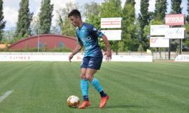 Nasce ufficialmente l'Ancona Matelica: si festeggia con l'arrivo dell'attaccante Rolfini