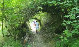 Tornano i turisti e le attività culturali nell'area di Mogliano