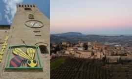 Montelupone, torna la festa del miele più antica d'Italia: il 21 e 22 agosto c'è Apimarche
