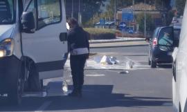 San Severino, furgone perde il carico: fusti di vernice finiscono in strada (FOTO)