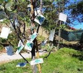 Domani a Montelupone c'è la Festa dell'Albero