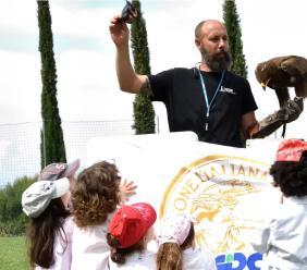 L'arte della Falconeria approda a Petriolo