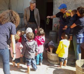 """Gagliole, venerdì 4 ottobre è stata giornata di vendemmia per l'Azienda Agricola """"La fornace degli Gnomi"""""""