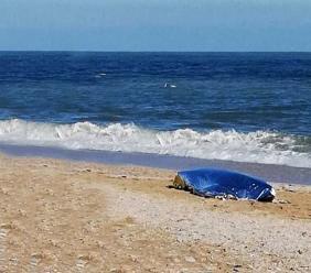 Segnalazione shock di un passante: donna trovata senza vita lungo il litorale