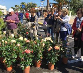 """Civitanova, torna la mostra mercato floro-vivaistica """"Il Mare in Fiore"""""""