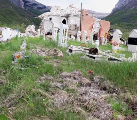 """Ussita, cinghiali """"profanano"""" il cimitero di Castelmurato"""