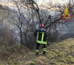 Incendio boschivo a Monte San Martino: intervento dei Vigili del Fuoco