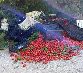 Chili di verdura abbandonati: gesto inspiegabile a Montecosaro (FOTO)