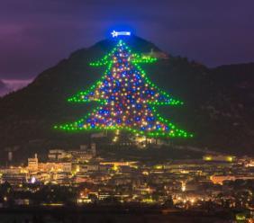 L'albero di Natale da record di Gubbio si accende grazie alla maceratese Fìdoka