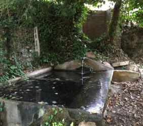 Montelupone,  al via la pulizia delle fonti rurali