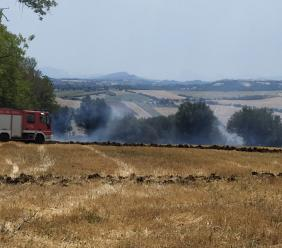 Pollenza, stoppie a fuoco: Vigili del Fuoco al lavoro da ore