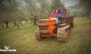 Boom di ascolti per Linea Verde, 3 milioni di italiani hanno visto la puntata dedicata a Recanati