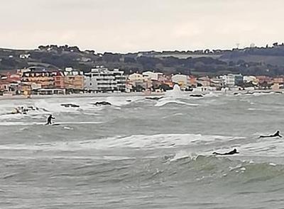Surfisti sfidano le onde a Civitanova