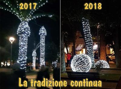 Civitanova, òps è successo di nuovo: continua il trend delle palme hot