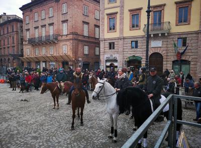 Grande festa a Tolentino per Sant'Antonio Abate, protettore degli animali. (FOTO)
