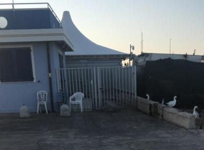 Civitanova, smantellata la pescheria abusiva (FOTO)
