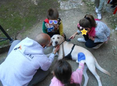 Civitanova, ripartono le attività del centro per la famiglia: grande novità la Pet Therapy