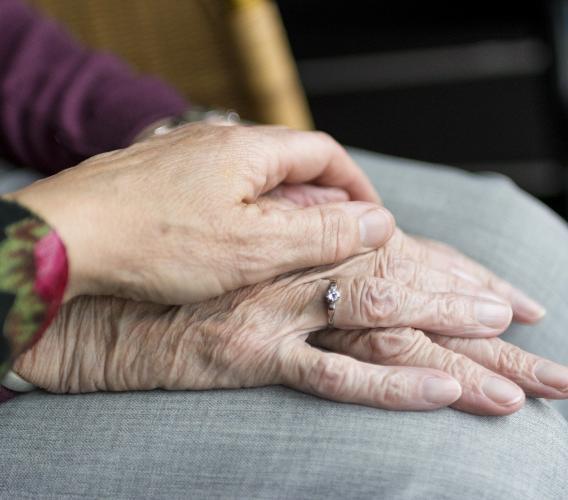"""Alzheimer,  esercizi per allenare memoria e attenzione: nasce il progetto """"Libertà di Movimento"""""""