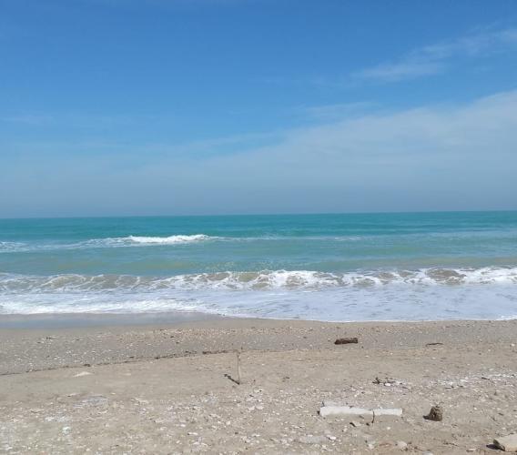 Si celebra la Giornata del Mare: sulla app della Guardia Costiera arriva la funzione 'avvistamenti'