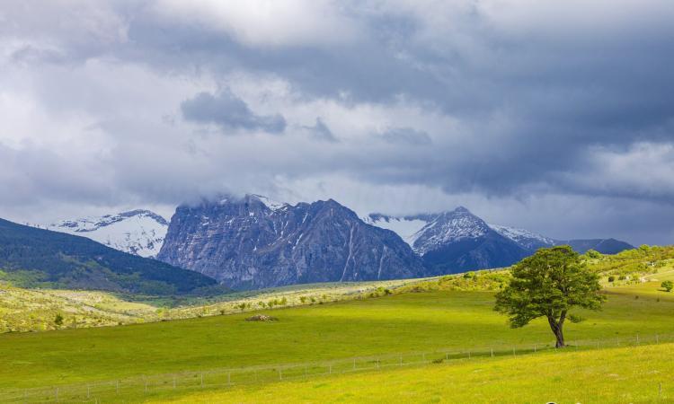 Fra i colori della primavera nella Provincia di Macerata (FOTO)