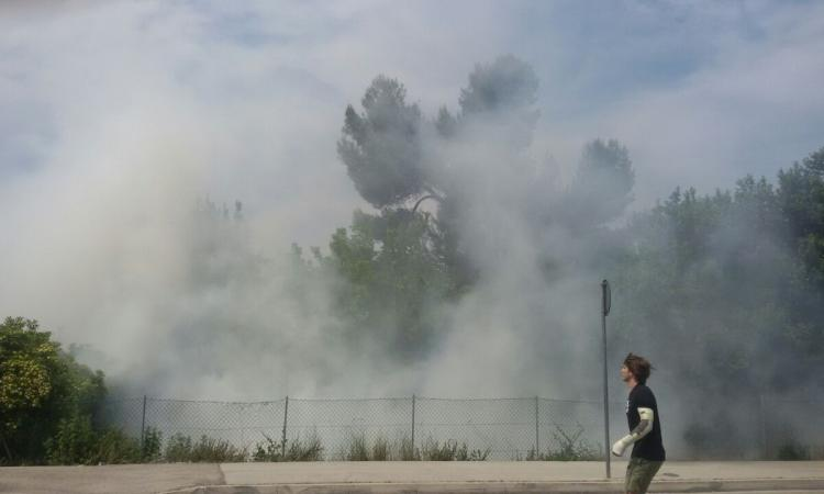 Civitanova: incendio in via Nelson Mandela