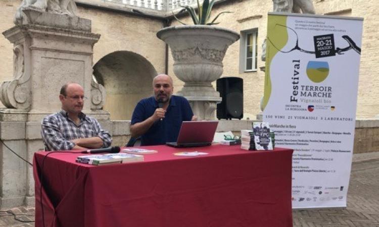 Al via Terroir Marche festival: a Macerata si festeggiano i vini bio