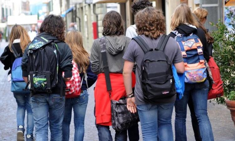 """Uscita degli studenti da scuola, Manzi: """"dal Senato finalmente certezze per scuola e famiglie"""""""