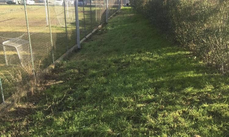 L'assessore Cognigni si esprime in merito alla pulizia di via Pisani a Fontespina
