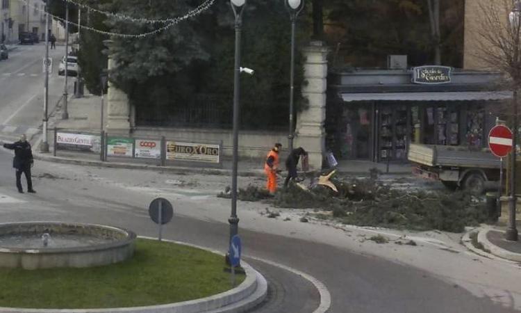 Vento forte nell'entroterra maceratese: tanti interventi per alberi caduti sulle strade